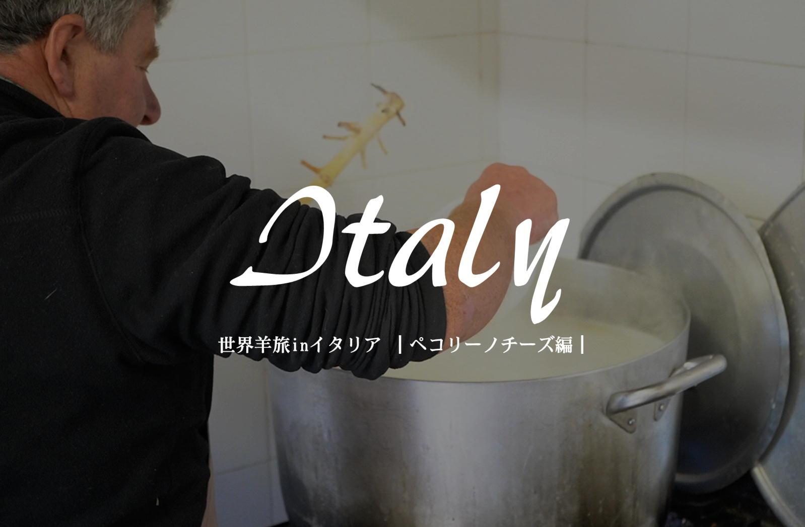 伝統製法の羊乳チーズ【イタリア/プラトヴェッキオ・スティーア】
