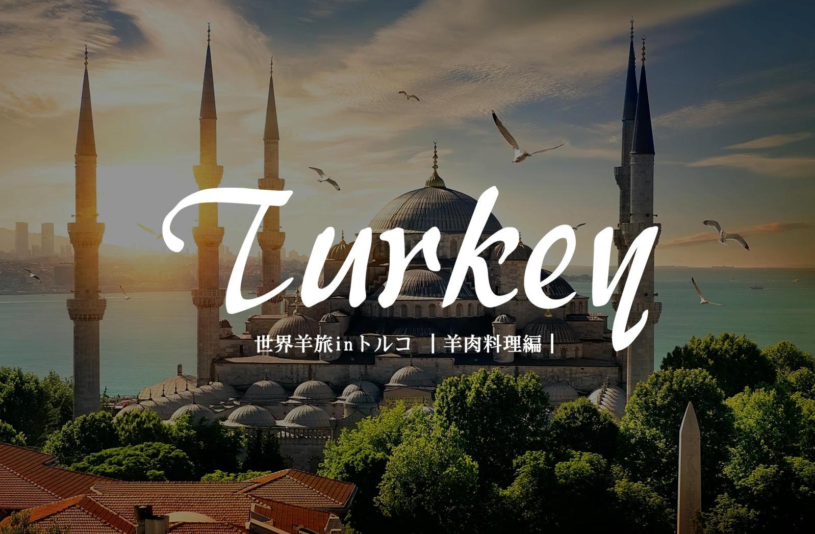 世界三大料理の一角「トルコ料理」は羊肉オンパレード《キョフテ、羊頭、内臓スープ、etc編》【トルコ/イスタンブール】