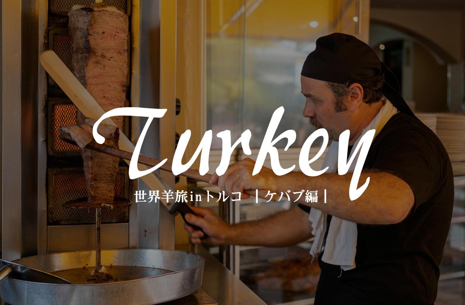 世界三大料理の一角「トルコ料理」は羊肉オンパレード《ケバブ編》【トルコ/イスタンブール】