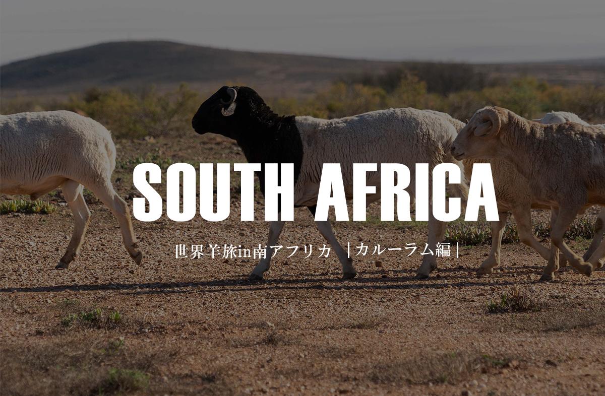 アフリカ大陸で育つ幻のカルーラム【南アフリカ/ウィリストン】
