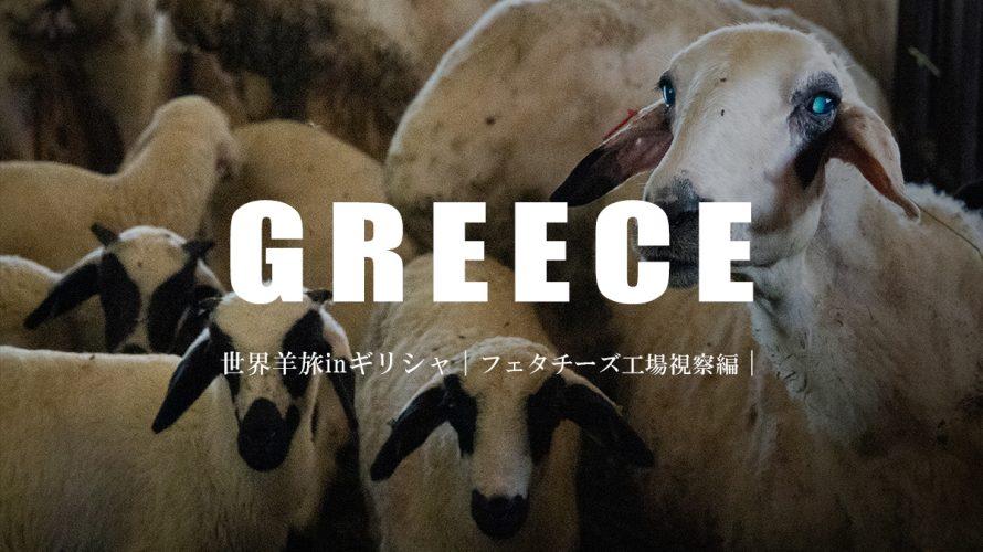 羊乳から作られるギリシャの代表的なチーズ。